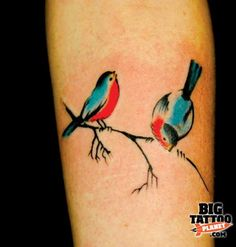 3 little birds tattoo incognito tattoo - colour tattoo big tattoo planet. Colorful Bird Tattoos, Little Bird Tattoos, Red Bird Tattoos, Small Tattoos, Tattoo Girls, Sister Tattoos, Girl Tattoos, Tattoos For Guys, Tatoos
