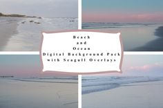 Beach and Ocean Digital Background Pack with Seagull Overlays for photography
