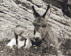 Mein Esel Benjamin, Hans Limmer und Lennnart Osbeck, 1968.