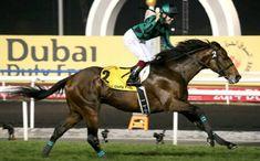 Just A Way Cavallo da corsa di razza purosangue inglese, campione in Giappone nato l'8 marzo 2009. Generato daHeart's Cry eSibyl. Di proprietà diAkatsuk