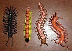 plastic millipede