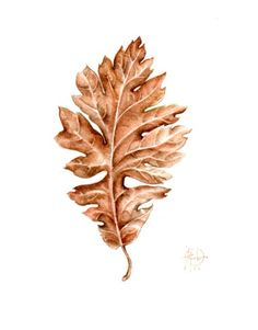 RED OAK LEAF ..Original 7x9Watercolour .. . NOT A PRINT ..Original Painting. $50.00, via Etsy.