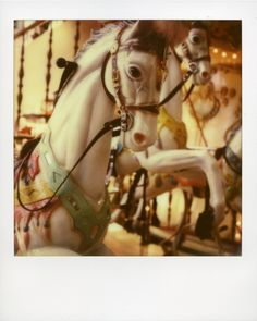 Shot by Rommel Pecson on #px680 color protection film.