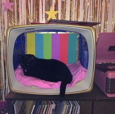 okay wait this cute lil kitty in this cute lil tv bed ahhhhh i cant even