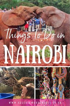 The Best Things To Do in Nairobi, Kenya Kenya Travel, Africa Travel, Beautiful Places To Travel, Best Places To Travel, Nairobi City, Stuff To Do, Things To Do, Adventure Tours, Travel Abroad