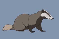 the quotgrumpy badgerquot from disneys fox and the hound fox