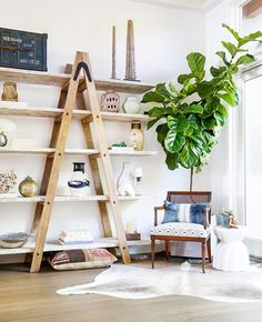 New style boho salon 30 Ideas Fiddle Leaf Fig Tree, Fiddle Fig, Style Me Pretty Living, Bedroom Seating, Bedroom Decor, Coastal Style, Ladder Decor, Living Spaces, Living Rooms