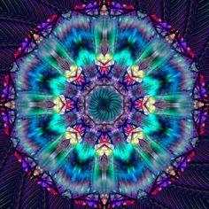 Mandala - Diamond Painting Kit – My Diamond Paintings Mandala Art, Art Fractal, Art Visionnaire, Diamond Art, Purple Diamond, Diamond Sketch, Diamond Design, 5d Diamond Painting, Visionary Art
