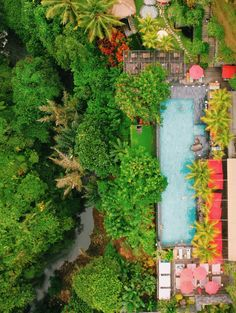 The most beautiful place to swim in Ubud: the stunning Jungle Fish pool club in Bali, Indonesia