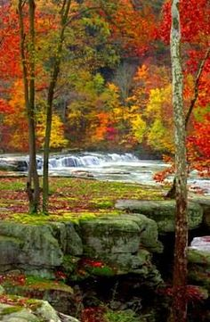 Vibrant Fall Foliage at Valley Falls State Park, West Virginia  Photo Credit: David E. Fattaleh / Steve Shaluta, Jr. - Courtesy of the WV Division of Tourism