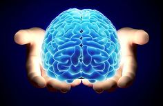 """PALESTRA: """"VENDENDO PARA CÉREBROS""""  Entender o comportamento do consumidor para poder influenciá-lo é um dos objetivos fundamentais do marketing.  O objetivo dessa palestra é mostrar como a Neurociência pode melhorar e potencializar as ações de marketing e potencializar as ações comerciais.  Em tempos de desafios crescentes, estes novos conhecimentos podem provocar importantes inovações.  #Vender #Cérebro #Palestra"""