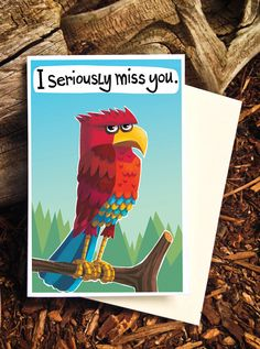 Funny Miss You Card Seriously Miss You Card Eagle by PicklePunch