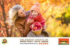 Healthy Alternatives to Halloween Candy: YumEarth Organics Fruit Snacks Recommended School Holiday Snacks, Healthy School Snacks, Healthy Treats, Healthy Foods, Halloween Season, Halloween Candy, Organic Fruit Snacks, Fall Fruits, Healthy Alternatives
