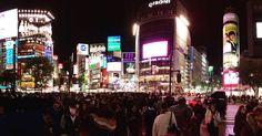 Shibuya Crossing Osaka, Shanghai, U Bahn, Tokyo Japan, Sushi, Times Square, Travel, Tokyo, Viajes