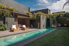Un long couloir de nage. Elément central du jardin, cette #piscine de grande longueur permet à ses possesseurs de pratiquer la natation à domicile dans d'excellentes conditions. @vivremapiscine