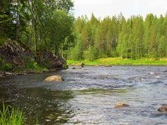 Fishing in the river Iijoki, area Taivalkosken Koskikalastus Alue, Taivalkoski, Lapland, Finland