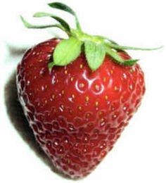 Oklahoma State Fruit - Strawberry