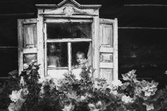 to be young Photo by Alicja Yusupov — National Geographic Your Shot Photography Photos, Amazing Photography, National Geographic Photos, Your Shot, Photo Editor, Shots, Black And White, Painting, Image
