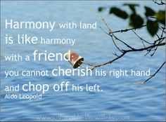 Don't we all wish for this - harmony between man and land♥ This is from Create a Sustainable Life with Lisa, feel free to check it out for more!    https://www.facebook.com/CreateASustainableLifeWithLisa  #harmony #coexistence #nature #environment #preservation #conservation #eco