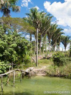 Rio Formiga - Povoado de Cardosa - Maranhão - Brasil