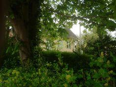Our garden in Roskilde