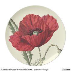 """Common Poppy"" Botanical Illustration Plate"