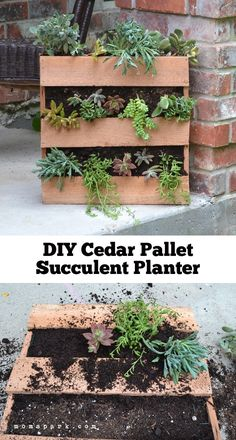 Need some new gardening supplies for Spring? If you want a DIY pallet planter for your lovely garden, try making planters. Try this easy pallet project. Vertical Pallet Garden, Pallet Planter Box, Succulent Planter Diy, Pallets Garden, Succulents Garden, Planter Ideas, Planter Boxes, Pallet Gardening, Garden Planters