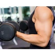 Fitness equipment leasing is only one step in the process. Weight training is an excellent way to reach your fitness goals. Weight Lifting Tips, Weight Training, Training Tips, Weight Lifters, Mma Training, Circuit Training, Muscle Building Supplements, Muscle Building Workouts, Build Muscle Fast