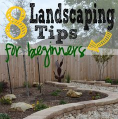 How to Landscape in 8 Simple Steps