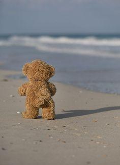 Giant Teddy Bear, Cute Teddy Bears, Ours Boyds, Footprints In The Sand, Arte Cholo, Teddy Bear Pictures, Bear Wallpaper, Boyds Bears, Love Bear