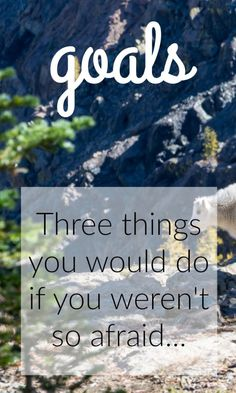 Journal Prompt - What are three things you would do it you weren't so afraid?
