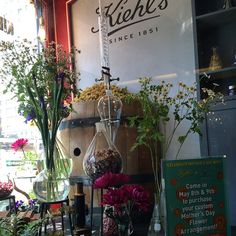 We had such fun decorating the @kiehlsnyc flagship store window yesterday! Come visit @gardenia_organic at #kiehls this Fri & Sat for #MothersDay  #flowers #nyc #gift #flowerlovers #sustainable #bestflorist #flowerdesign #wellbeing #flowerpower #aromatherapy #buylocal #beauty #apothecary