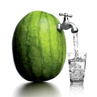 Eat Your Water: Hydrating foods provide plenty of fluid and healthy nutrients to fuel hot summer runs.
