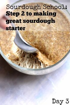 Sourdough Starter Sc