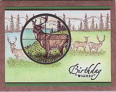 Hunter's Birthday Wishes by labullard - Cards and Paper Crafts at Splitcoaststampers