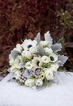The bride will carry a bouquet of white hydrangea, green seeded eucalyptus, white anemones, white tulips, white ranunculus, grey dusty miller and silver brunia wrapped in ivory ribbon with the stems showing.