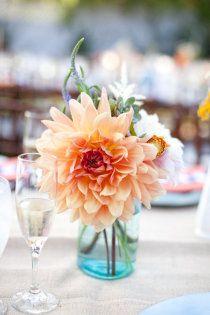Wedding color idea 1... Soft Orange and A tealish blue?