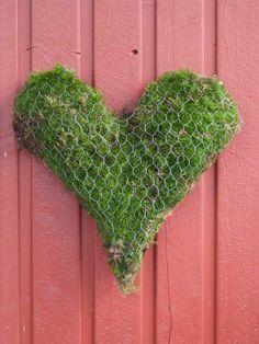 Hønsenetting+mose=hjerte!