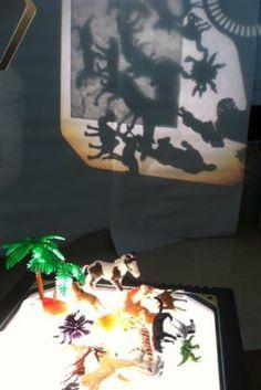 Shadow/Light and animals.