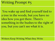 Writing Prompt #5-Writers Keep Writing What they Write