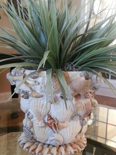 "Seashell pot. Fun to make. Generously apply sanded grout to terra cotta pot (I used ""Ready to Use Adhesive & Grout"", white, sanded, from Lowe's.) Affix shells. After set & dry, spray w/satin polyurethane. If you use a real plant, use waterproofing spray inside pot (my plant is faux w/moss around it)."