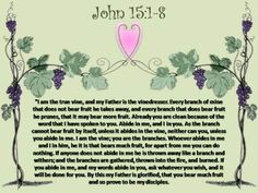 images of John 15:1-2 - Google Search