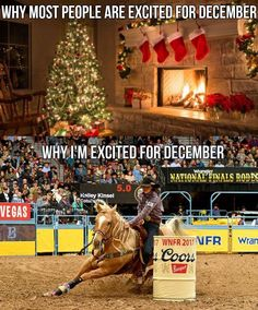 I'm excited about both Christmas and National Finals Rodeo! Barrel Racing Quotes, Barrel Racing Horses, Barrel Horse, Horse Training Tips, Horse Tips, Horse Stalls, Horse Barns, Horse Saddles, Western Saddles