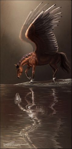 Pegasus/flying horse art. I love those wings! My ideal pegasus would have ridiculously long wings; I think it would make more sense.