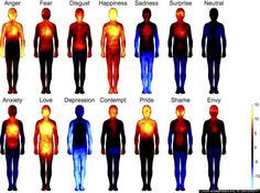 Research Mapping Human Emotions Shows Strong Mind Body Connection - The Mind Unleashed______This is so awesome! that our body shows our feelings! Reiki, Feeling Loved, How Are You Feeling, Feeling Happy, Heat Map, Different Emotions, Human Emotions, Negative Emotions, Negative Thoughts