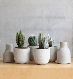Concrete   cacti is a great mix| Photo by Susann Larsson, Purple Area blog