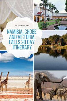 Experience the very best of Namibia, Chobe and Victoria Falls in 20 days. Desert tours, river cruises, game viewing and helicopter flights over Victoria Falls- Come explore Southern Africa with us. Desert Tour, Victoria Falls, Cruises, Southern, Africa, Articles, Tours, River, Explore