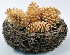 How Make Bleached Pine Cones You will need: Pine cones household liquid bleach large bucket glass plate a rock or brick foil lined baking sheet Best done outside in a well-ventilated area. Winter Christmas, Christmas Holidays, Christmas Decorations, Christmas Ornaments, Christmas Projects, Holiday Crafts, Holiday Decor, Holiday Style, Bleach Pinecones