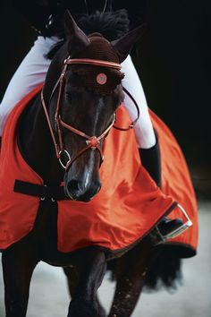 The Horse at Hermès |♥נк∂.