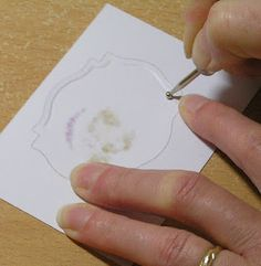 Creating an embossed edge.  After diecutting, leave in place.  Go around the Nestability then pop the die cut itself out